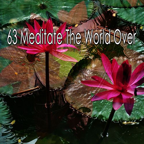 63 Meditate the World Over de Zen Meditate