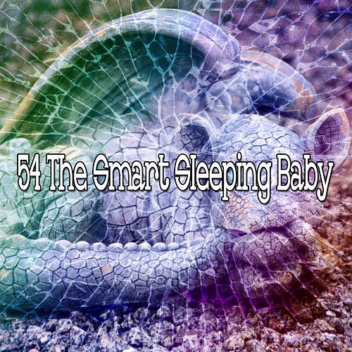 54 The Smart Sleeping Baby de Spa Relaxation