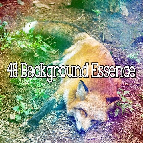 48 Background Essence by Trouble Sleeping Music Universe