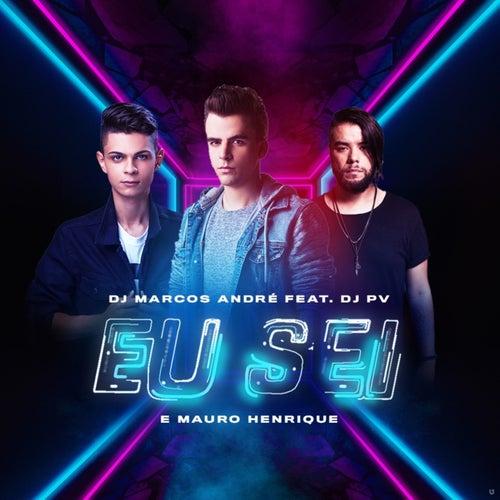 Eu Sei (Remix) by DJ Marcos André