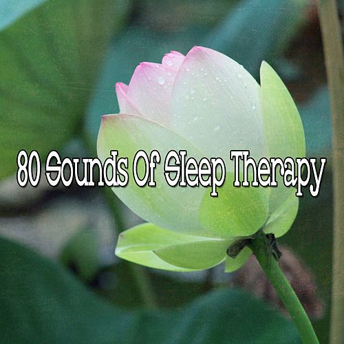80 Sounds of Sleep Therapy de Meditación Música Ambiente
