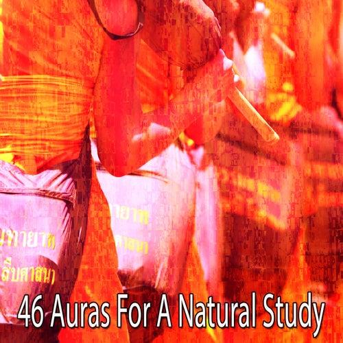 46 Auras for a Natural Study de Meditation Zen Master