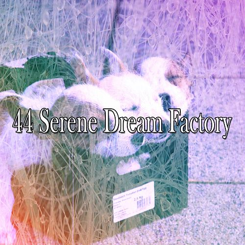 44 Serene Dream Factory by Ocean Sounds Collection (1)