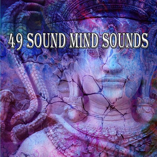 49 Sound Mind Sounds de White Noise Research (1)