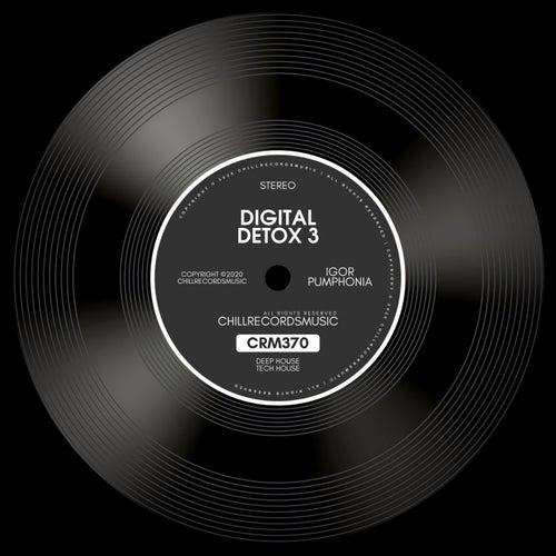 Digital Detox 3 de Igor Pumphonia