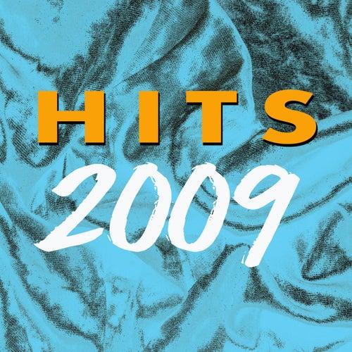 2009 Hits von Various Artists
