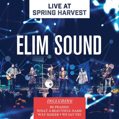 Live at Spring Harvest by Elim Sound
