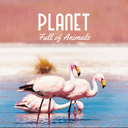 Planet Full of Animals by Various Artists
