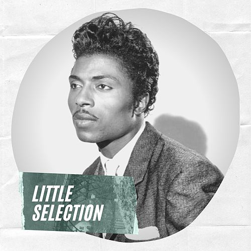 Little Selection de Little Richard