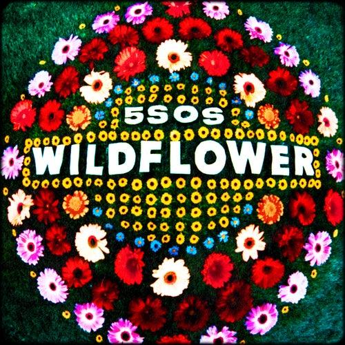 Wildflower von 5 Seconds Of Summer
