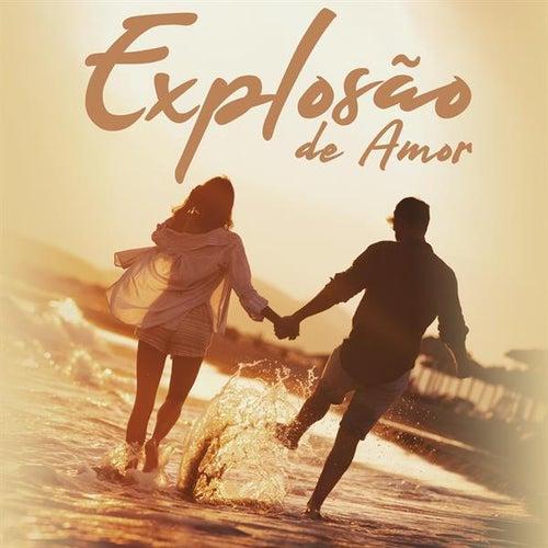 Explosão de Amor de Various Artists