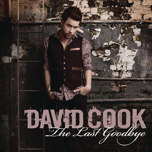 The Last Goodbye de David Cook