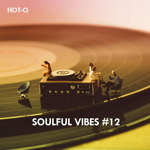 Soulful Vibes, Vol. 12 by Hot Q
