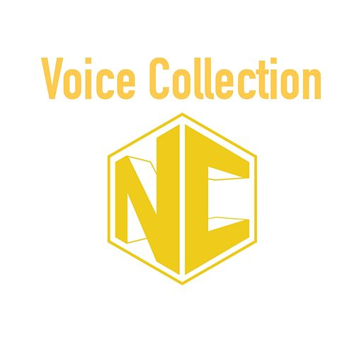 NC Voice Collection by NC Music Mx