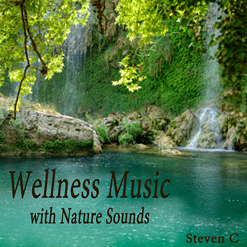 Wellness Music with Nature Sounds by Steven C