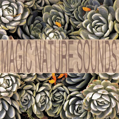 Magic Nature Sounds by Nature Sounds (1)