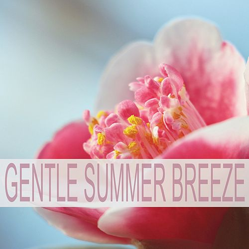 Gentle Summer Breeze fra Nature Sounds (1)