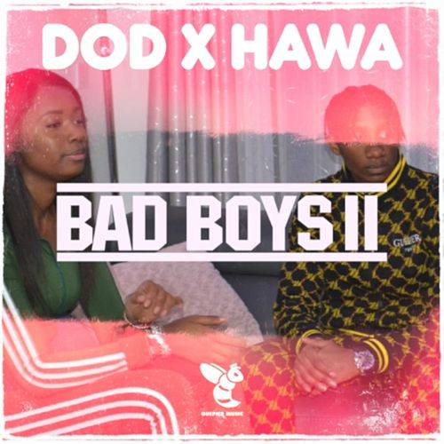 Bad Boys II by DoD