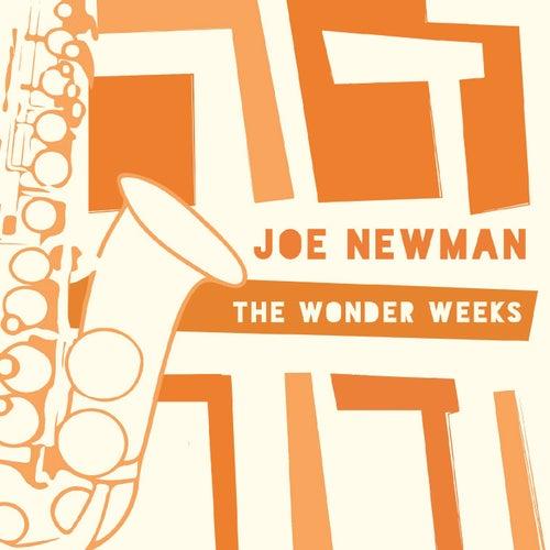 The Wonder Weeks by Joe Newman