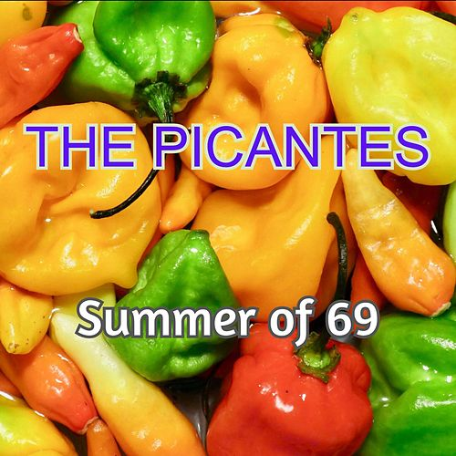 Summer of 69 von The Picantes