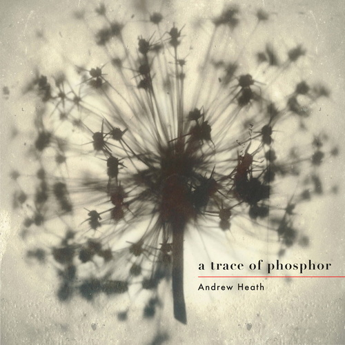 A Trace of Phosphor by Andrew Heath