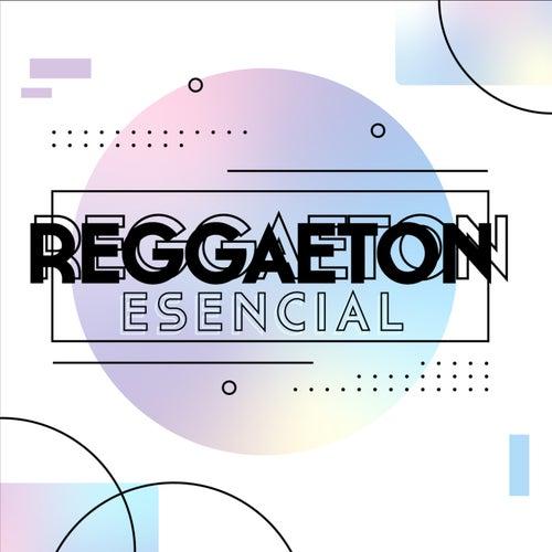 Reggaeton Esencial von Various Artists