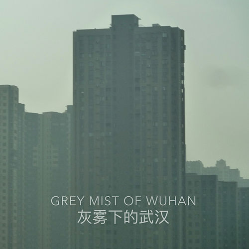 Grey Mist of Wuhan by Arnar Guðjónsson