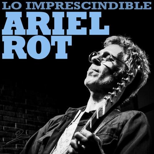 Lo imprescindible de Ariel Rot