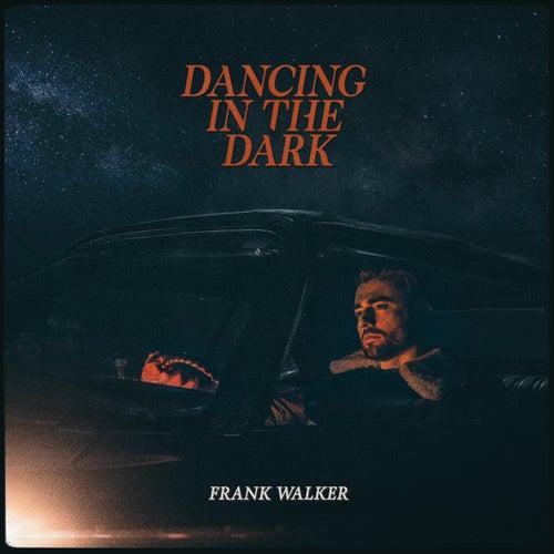 Dancing In The Dark by Frank Walker