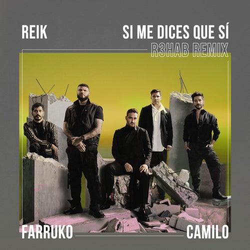 Si Me Dices Que Sí (R3HAB Remix) de Reik
