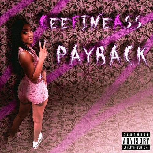 Payback von CeeFineAss