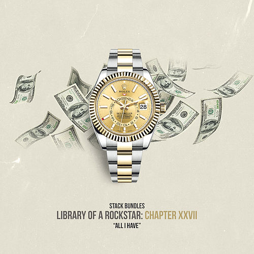 Library of a Rockstar: Chapter 27 - All I Have de Stack Bundles