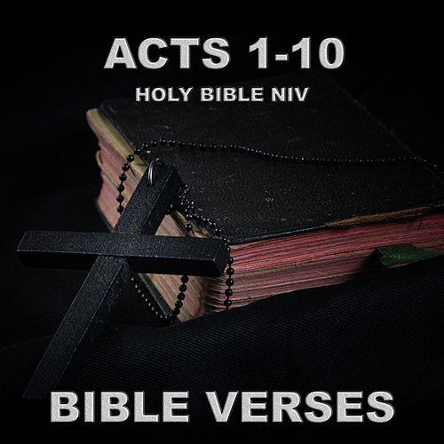 Holy Bible Niv Acts 1-10 by Bible Verses