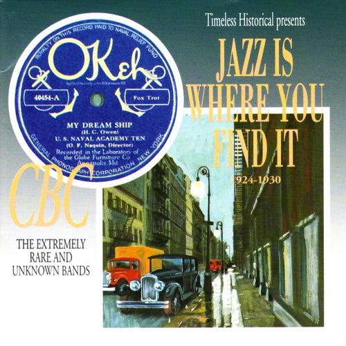 Jazz Is Where You Find It 1924-1930 von VARIOUS