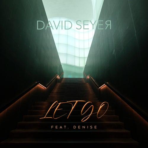 Let Go by David Seyer