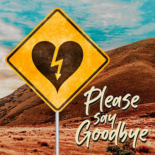 Please Say Goodbye by Lasses Rogers Band