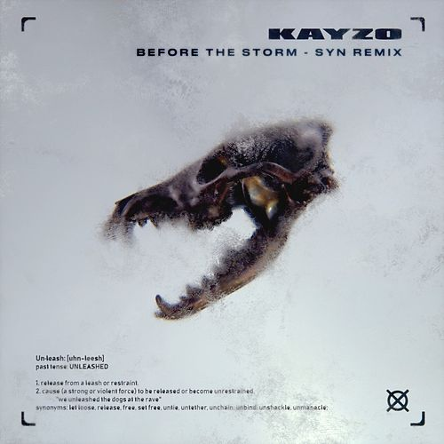 Before The Storm (SYN Remix) de Kayzo