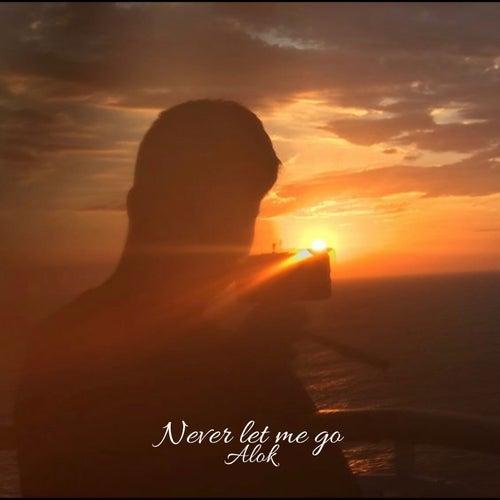 Never Let Me Go de Samuel da Silva