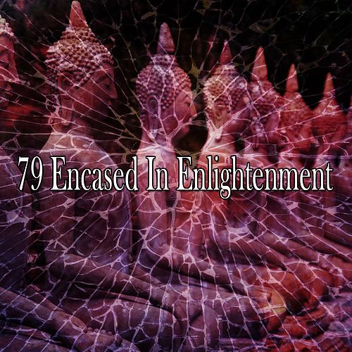 79 Encased in Enlightenment de Yoga