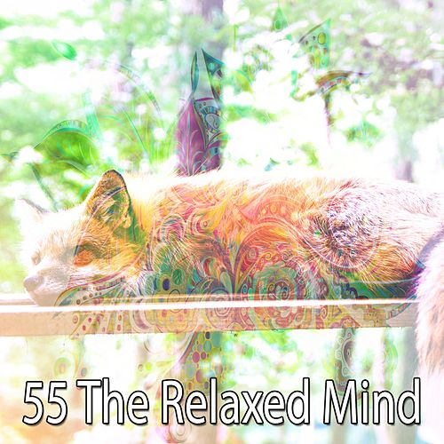 55 The Relaxed Mind by Baby Sleep Sleep