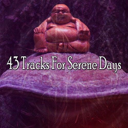 43 Tracks for Serene Days von Massage Therapy Music