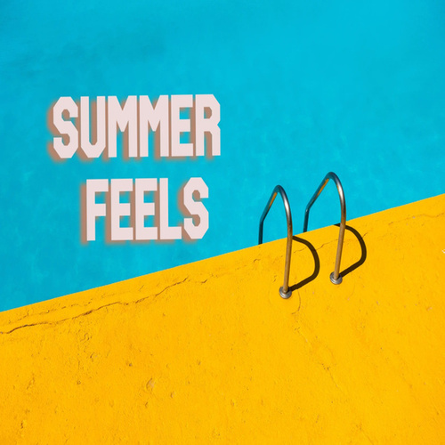 Summer Feels van Various Artists