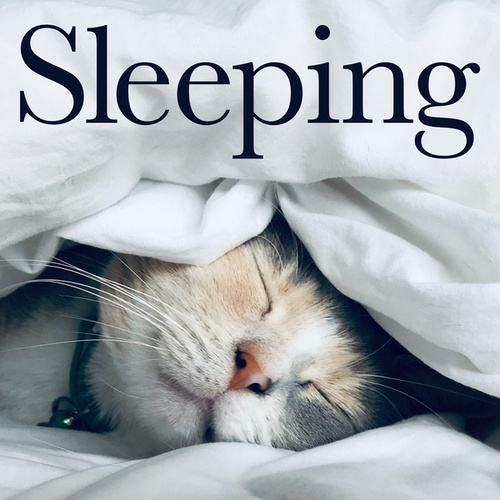 Sleeping by Various Artists