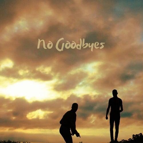 No Goodbyes de James Howlett