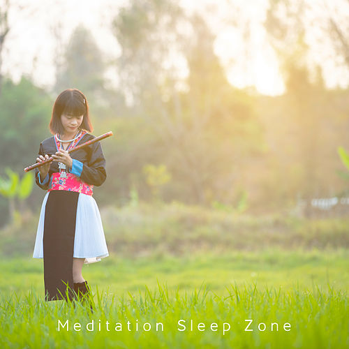 Meditation Sleep Zone by Deep Sleep Meditation