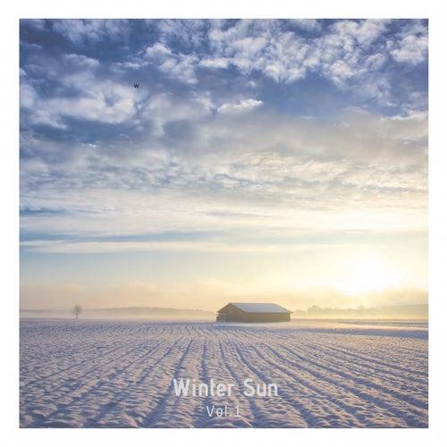Winter Sun, Vol.1 de Spleen Elctronica, B Bartok, Moss, Ogere, Fabri Capresse, KonCia, Mandalay, Dano, Angelo Cossi, BlackSun