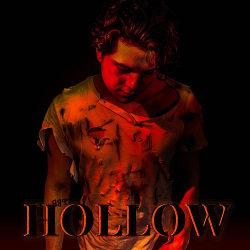 Hollow by Andrew Waines