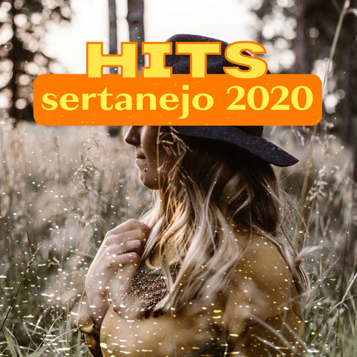Hits Sertanejo 2020 de Various Artists