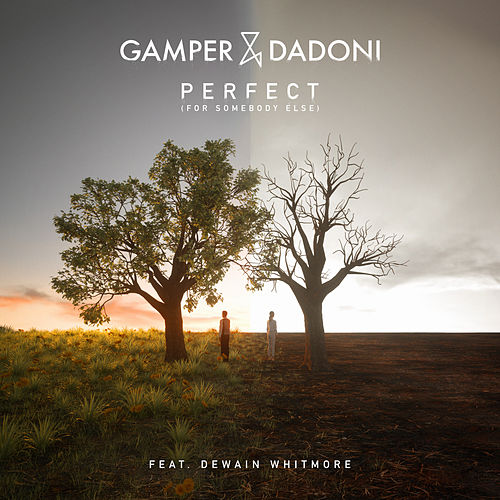 Perfect (For Somebody Else) [feat. Dewain Whitmore] de GAMPER & DADONI