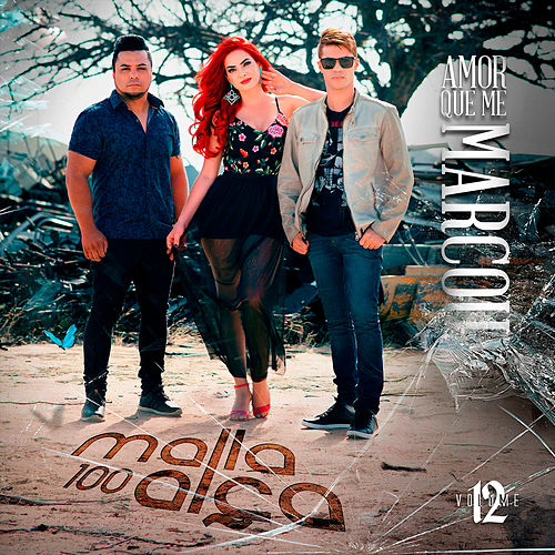 Amor Que Me Marcou, Vol. 12 by Malla 100 Alça